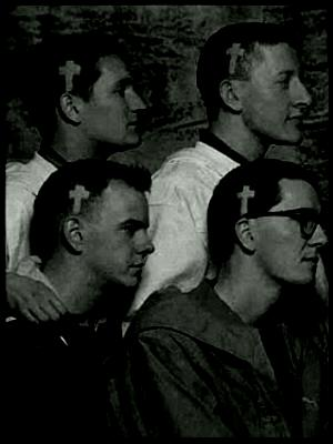 THE HOUSEMARTINS.